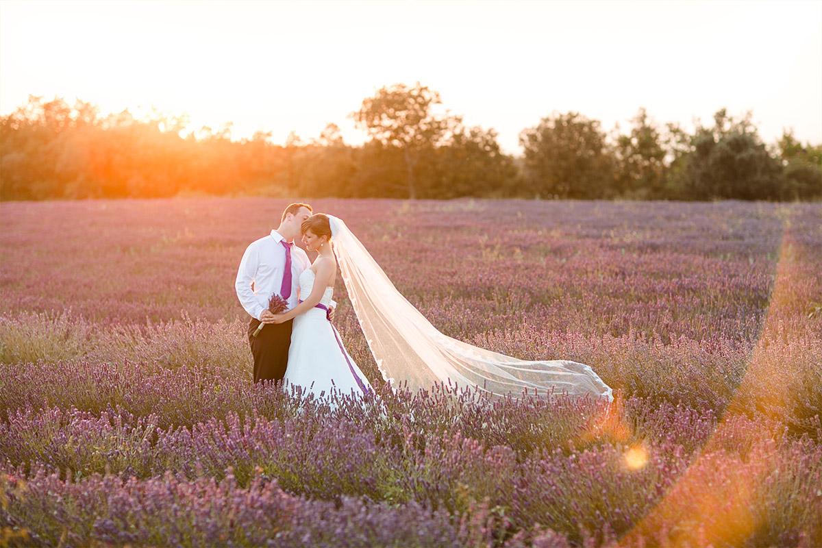 Brautpaarfoto bei Sonnenuntergang in Lavendelfeld aufgenommen von Hochzeitsfotograf Berlin in Provence © Hochzeitsfotograf Berlin hochzeitslicht