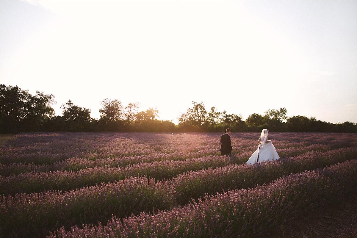 Brautpaarfotos von Brautpaar bei After-Wedding-Shooting in Lavendelfeld, Provence © Hochzeitsfotograf Berlin hochzeitslicht